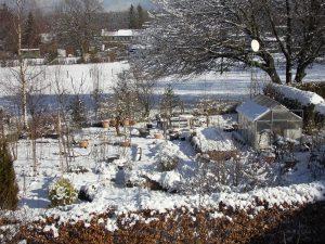 verschneiter Garten 220215