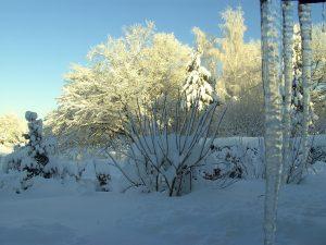 Sonnen-Schnee-Bilder 12